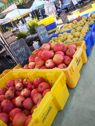 El Cerrito Farmers Market