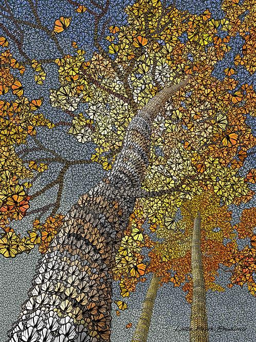 Aspen Monarchs, 24x18