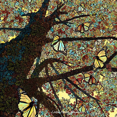 Monarch Mosaic 1, 16x16