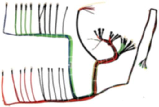 Kabelbaum Hersteller - Kabelbäume individuell herstellen lassen