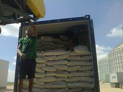 Exportacion Arroz
