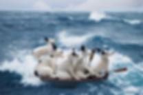 Little Dorises in a boat.jpg