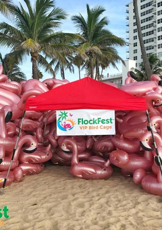 2018 Flockfest pic4.jpg