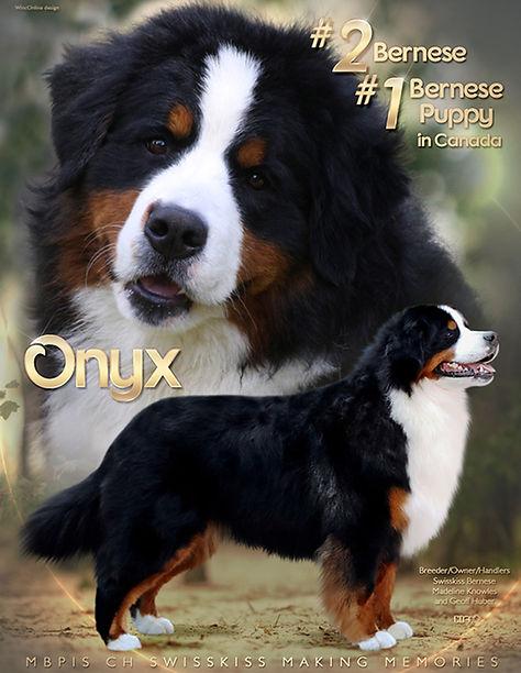 Ad for Onyx  2021.jpg