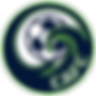 CAFC Logo_edited (1).png
