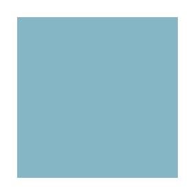 Instagram - wisp