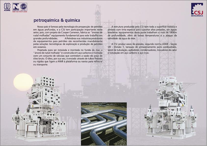 CSJ web 15.png