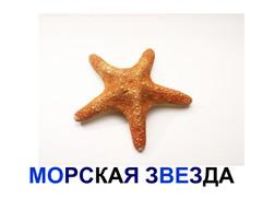 f18871dda9db1bfc043beb949237fde3-23.jpg