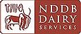NDS Logo.webp