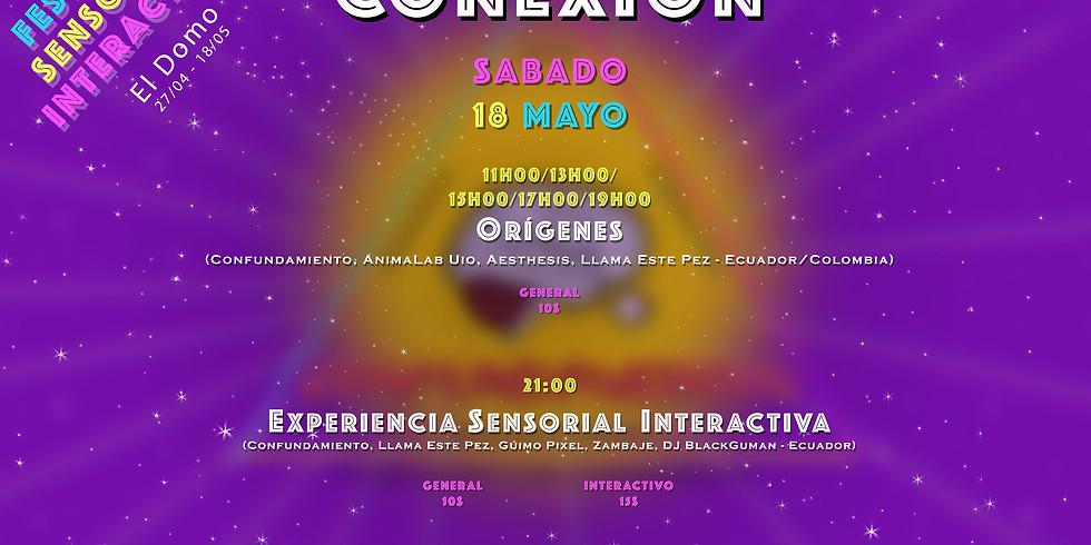 3er Festival Sensorial Interactivo (CONEXIÓN)