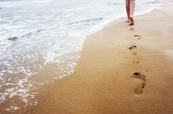 Marche-dans-l-eau-le-longe-cote-est-un-v