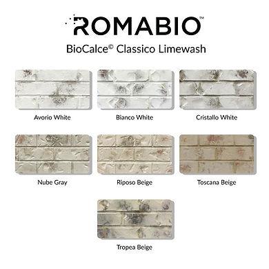 romabio limewash.jpg