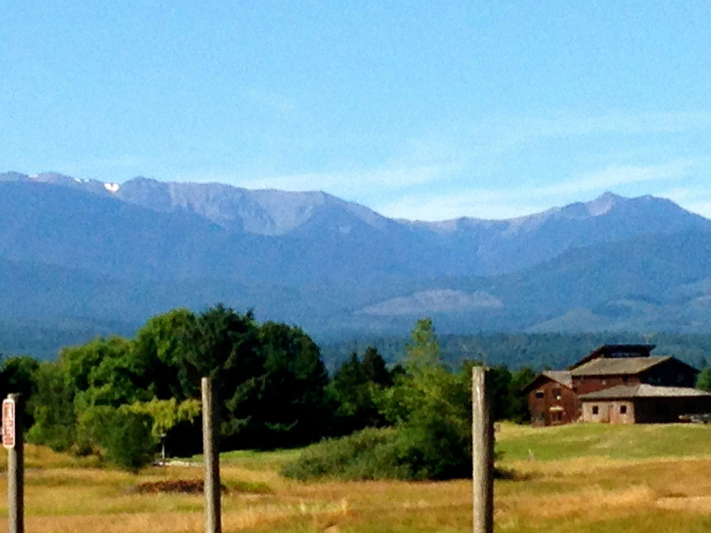 Olympic Mountains No Snow