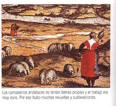 158-3.jpg