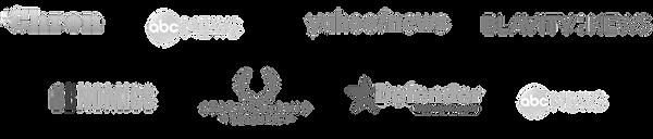 news logos (2).png