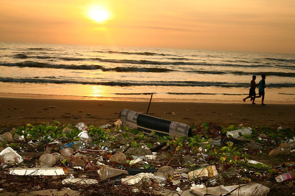 Green Firebreak, plastic pollution, save our seas, marine litter, how much plastic, ocean pollution