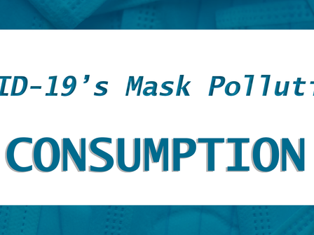 COVID-19's Mask Pollution: Consumption