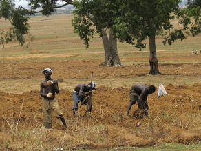 Security Brief: AFRICOM Week of April 26, 2021