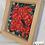 Thumbnail: Nine Poinsettia
