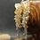 Thumbnail: Серьги «Краски заката»