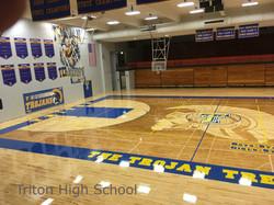 Triton High School