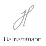 Hausammann RayKen Events DJ Schweiz Suisse Switzerland