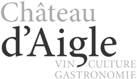 chateau d'aigle RayKen Events DJ Schweiz Suisse Switzerland
