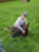 Czech German Shepherd purebred AKC puppies for sale dogs working puppy pups for sale Montana western northwest Idaho Washington Wyoming North Dakota South Dakota California Oregon Nevada Arizona Utah New Mexico Colorado Nebraska Kansas Oklahoma Texas Louisiana Arkansas Missouri Illinois Alaska Minnesota Wisconsin Iowa Missouri Illinois Indiana Michigan Ohio Kentucky Tennssee Alabama Georgia Florida South Carolina North Carolina Virginia Maryland Pennsylvania New York West Virginia Veront New Hampshire New Jersey Maine Massachusetts Connecticut New Jersey Rhode Island Czech German Shepherd purebred AKC puppies for sale dogs working line Gepuppy for sale German Shepherd pups for sale Shepherd Czech German Shepherd purebred AKC puppies for sale dogs working