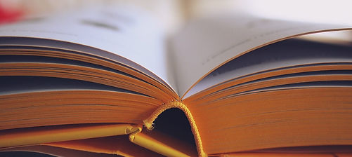 Book spine.jpg
