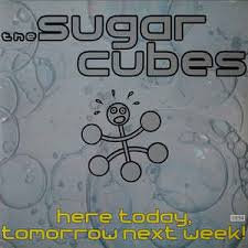 The sugar cubes - Here today, tomorrow next week