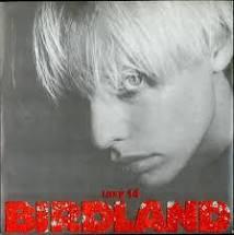 Birdland - Paradise