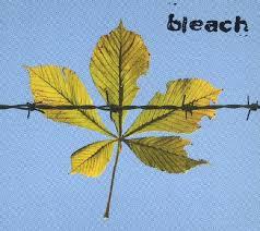 Bleach - Snap EP