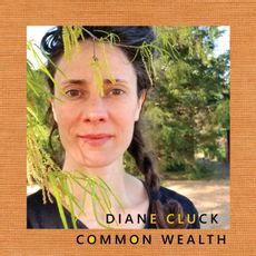 Diane Cluck - Common Wealth