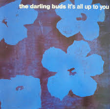 The Darling Buds - It's all up to you