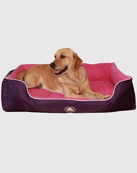 cama, perro, accesorios, mascota, mascan
