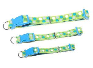 Collar Fluorescente 1.jpeg