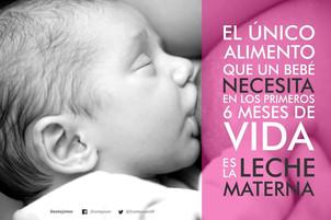 Semana de la  lactancia: beneficios para la mamá y el bebé
