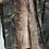 Thumbnail: BOMBER CAMUFLAJE - INTERIOR SINTÉTICO O CONEJO: 17 COLORES