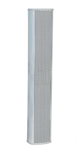 AM-CLSK-40C - Parlante Columna
