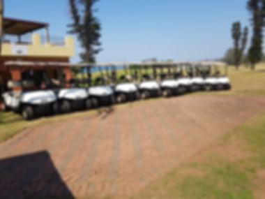 Golf carts fleet.jpg