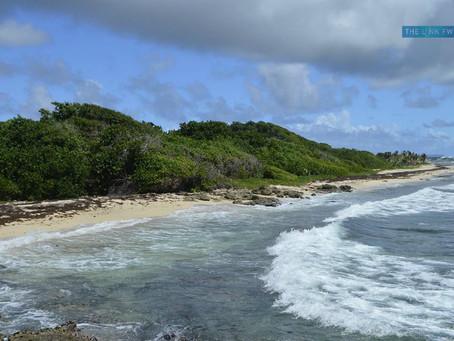 Les Antilles parmi les destinations préférées des français
