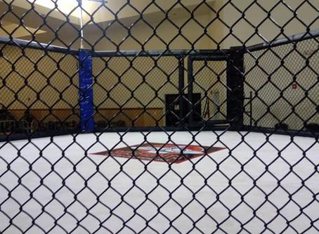 Hybrid Fighting Team, le MMA made in Gwada !