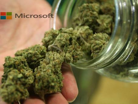 Microsoft s'allie à une startup pour suivre les ventes de cannabis