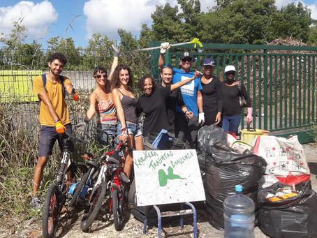 Gwadécologie : ensemble pour préserver l'environnement