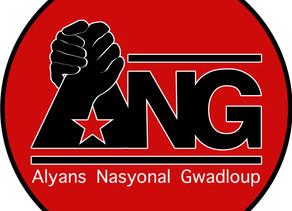 """Alyans Nasyonal Gwadloup : """" une alliance pour construire la Guadeloupe"""""""