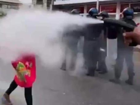 [ Guyane ] : Des chiens et du gaz lacrymogène face à des carnavaliers.