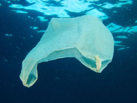 La Caraïbe sous le plastique.