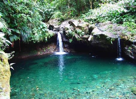 TOP 10 des plus belles cascades et rivières de Guadeloupe.