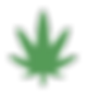 Icono Cannabis2.PNG