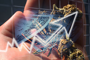 Canva - Cannabis Stocks Soaring.jpg